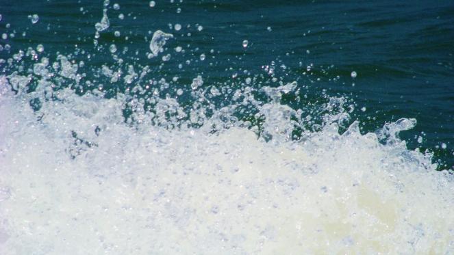 ocean spray--Rebecca Górzyńska--Delphina Rose